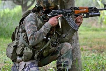 সীমান্তে গোলাগুলি, ভারতের ৫ পাকিস্তানের ৩ সেনা নিহত