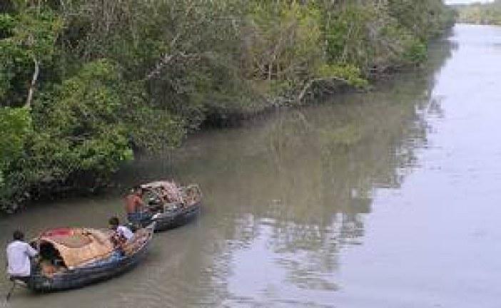 সুন্দরবনে পাশ পারমিট ছাড়াই মাছ শিকার চলছে