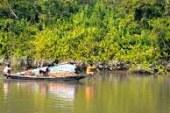সুন্দরবনে বিষ প্রয়োগে মাছ শিকারের দায়ে ৩ জেলে আটক